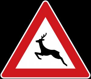 عبور حیوانات وحشی