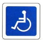 راننده معلول